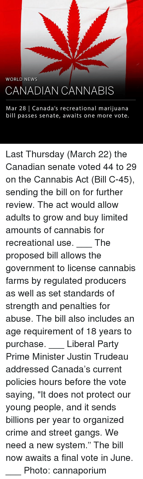 "Crime, Memes, and News: WORLD NEWS  CANADIAN CANNABIS  Mar 28 | Canada's recreational marijuana  bill passes senate, awaits one more vote Last Thursday (March 22) the Canadian senate voted 44 to 29 on the Cannabis Act (Bill C-45), sending the bill on for further review. The act would allow adults to grow and buy limited amounts of cannabis for recreational use. ___ The proposed bill allows the government to license ­cannabis farms by regulated producers as well as set standards of strength and penalties for abuse. The bill also includes an age requirement of 18 years to purchase. ___ Liberal Party Prime Minister Justin Trudeau addressed Canada's current policies hours before the vote saying, ""It does not protect our young people, and it sends billions per year to organized crime and street gangs. We need a new system."" The bill now awaits a final vote in June. ___ Photo: cannaporium"