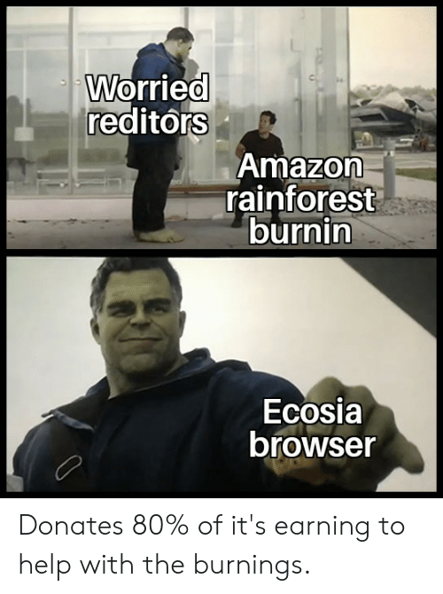 Amazon, Reddit, and Help: Worried  reditórs  Amazon  rainforest  burnin  Ecosia  browser Donates 80% of it's earning to help with the burnings.