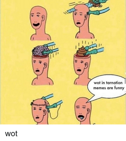 Dank Memes, Wot, and Funnyes: wot in tarnation  memes are funny wot
