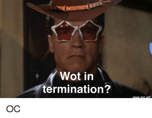 Dank Memes, Wot, and Ipg: Wot in  termination?  www.ipg wtf OC