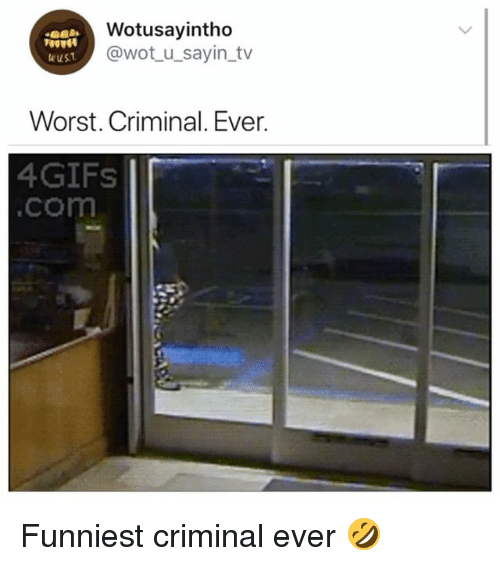 Girl Memes, Wot, and Com: Wotusayintho  @wot u_sayin tv  eus  Worst. Criminal. Ever.  4GIFs  .com Funniest criminal ever 🤣