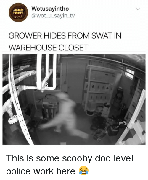 Police, Scooby Doo, and Work: Wotusayintho  @wot_u_sayin tv  ust  GROWER HIDES FROM SWAT IN  WAREHOUSE CLOSET This is some scooby doo level police work here 😂