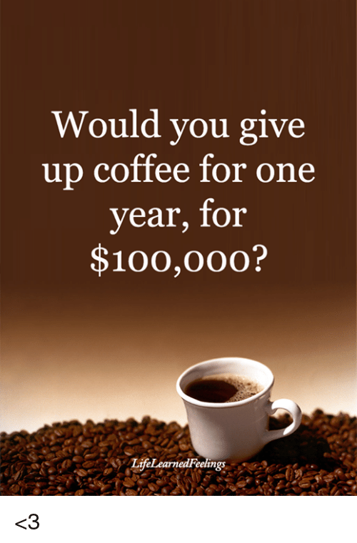 Anaconda, Memes, and Coffee: Would you give  up coffee for one  year, for  $100,00o?  LifeLearnedFeelings <3