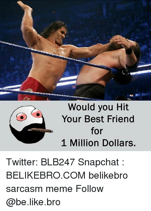 Be Like, Best Friend, and Meme: Would you Hit  OYour Best Friend  for  1 Million Dollars. Twitter: BLB247 Snapchat : BELIKEBRO.COM belikebro sarcasm meme Follow @be.like.bro