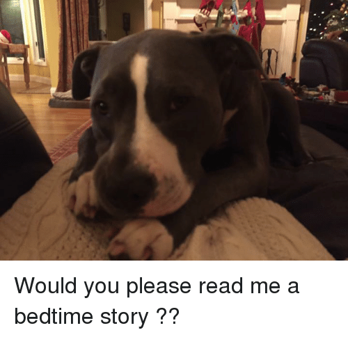 Would You Please Read Me a Bedtime Story ?? | Meme on ME ME