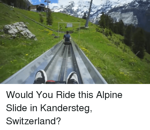 would you ride this alpine slide in kandersteg switzerland dank