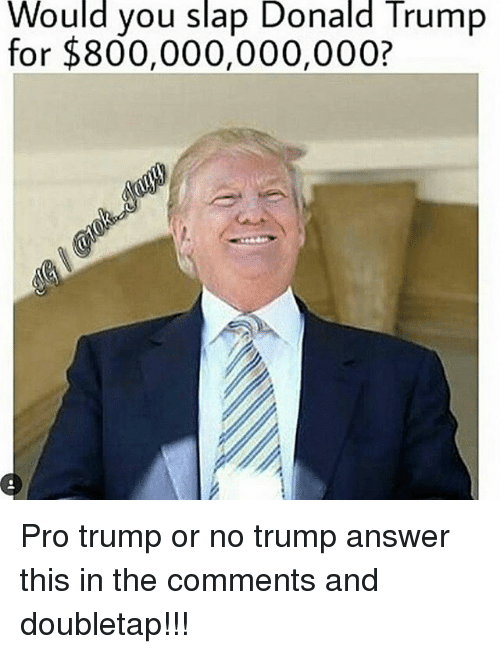 Donald Trump, Memes, and Trump: Would you slap Donald Trump  for $800,000,000,000? Pro trump or no trump answer this in the comments and doubletap!!!