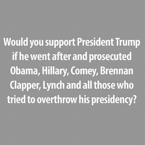 Memes, Obama, and Trump: Would you support President Trump  if he went after and prosecuted  Obama, Hillary, Comey, Brennan  Clapper, Lynch and all those who  tried to overthrow his presidency?