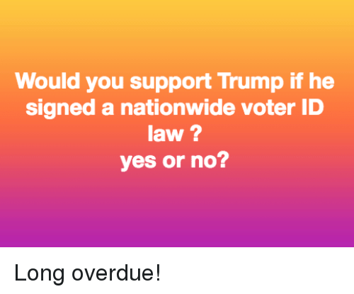Nationwide, Trump, and Yes: Would you support Trump if he  signed a nationwide voter ID  law ?  yes or no? Long overdue!