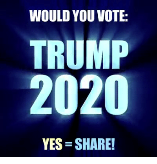 Trump, Yes, and You: WOULD YOU VOTE:  TRUMP  2020  YES SHARE!