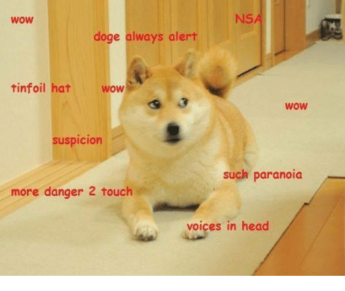 wow nsa doge always alert tinfoil hat wow wow susdicion 26715446 wow nsa doge always alert tinfoil hat wow wow susdicion such