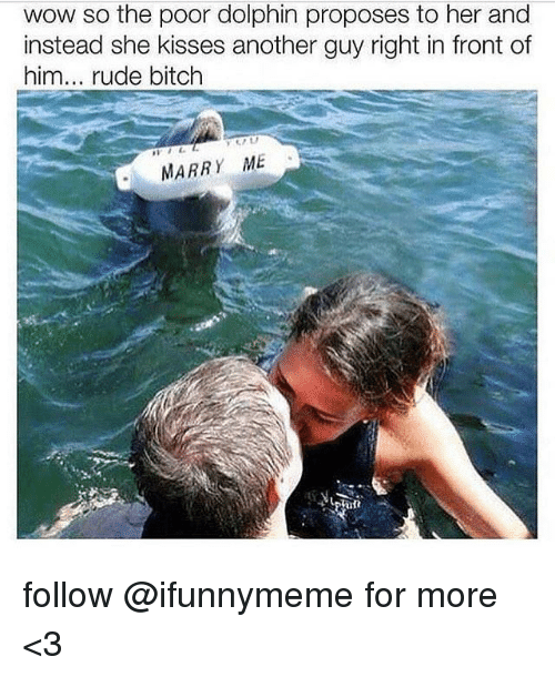 Funny Rude And Dolphin Wow So The Poor Dolphin Proposes To Her And