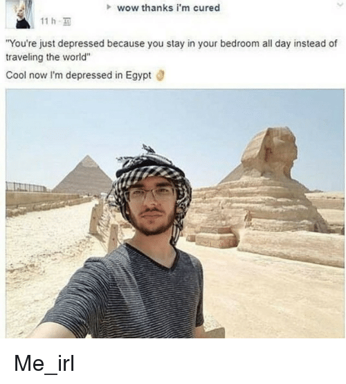 "Wow, Cool, and World: wow thanks i'm cured  11 h  You're just depressed because you stay in your bedroom all day instead of  traveling the world""  Cool now I'm depressed in Egypt ö Me_irl"