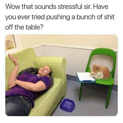 Memes, Shit, and Wow: Wow that sounds stressful sir. Have  you ever tried pushing a bunch of shit  off the table?