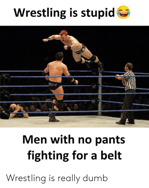 Dumb, Wrestling, and Fighting: Wrestling is stupid  Men with no pant:s  fighting for a belt Wrestling is really dumb
