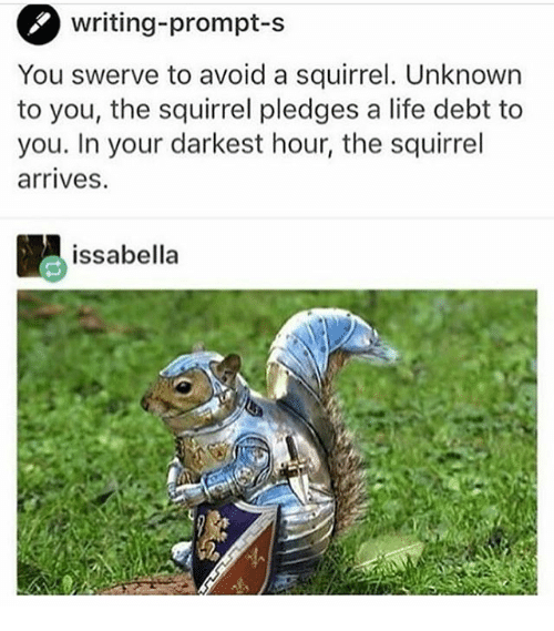 Life, Memes, and Squirrel: writing-prompt-S  You swerve to avoid a squirrel. Unknown  to you, the squirrel pledges a life debt to  you. In your darkest hour, the squirrel  arrives.  issabella
