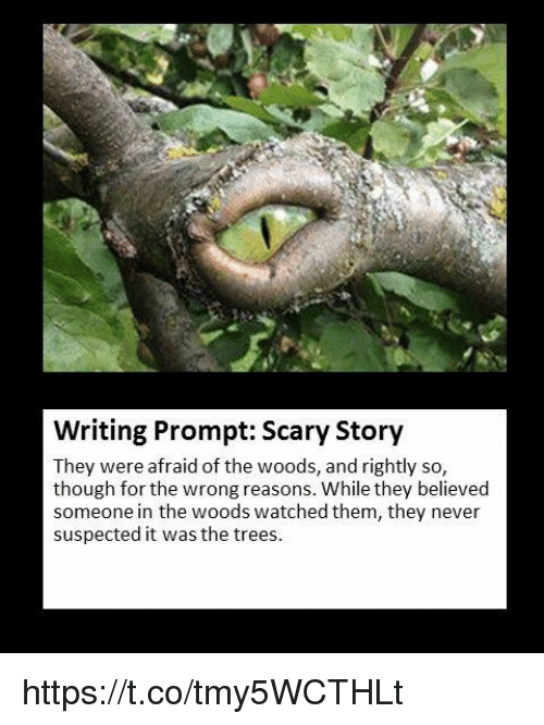 acirc best memes about scary story scary story memes memes trees and never writing prompt scary story they were afraid of