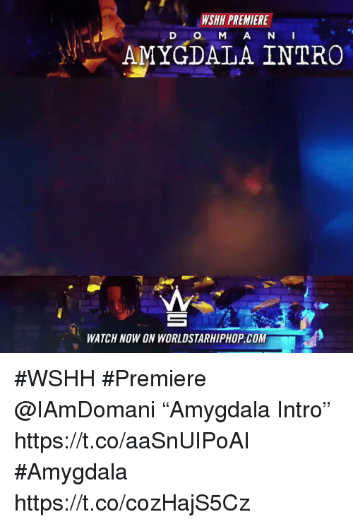 "Sizzle: WSHH PREMIERE  D O M A N I  AMYGDALA INTRO  WATCH NOW ON WORLDSTARHIPHOP COM #WSHH #Premiere @IAmDomani ""Amygdala Intro"" https://t.co/aaSnUIPoAI #Amygdala https://t.co/cozHajS5Cz"