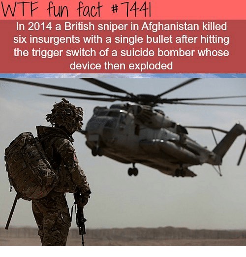 Memes, Wtf, and Afghanistan: WTF fun fact #1441  In 2014 a British sniper in Afghanistan killed  six insurgents with a single bullet after hitting  the trigger switch of a suicide bomber whose  device then exploded