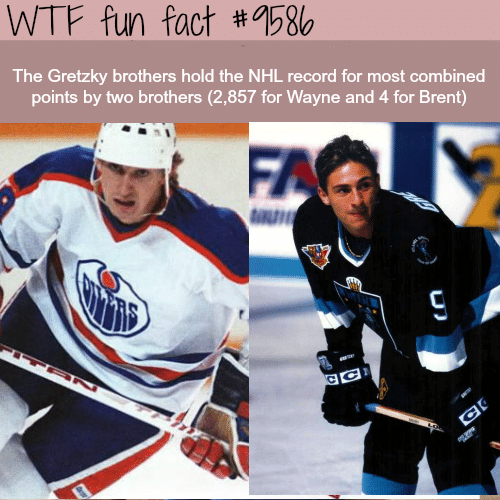 Wtf Fun Fact 9586 The Gretzky Brothers Hold The Nhl Record For Most
