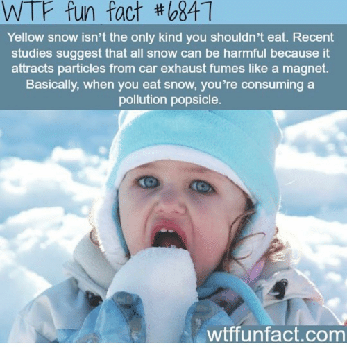 Memes, Snow, and 🤖: WTF fun fact th o84  Yellow snow isn't the only kind you shouldn't eat. Recent  studies suggest that all snow can be harmful because it  attracts particles from car exhaust fumes like a magnet  Basically, when you eat snow, you're consuming a  pollution popsicle.  wtff unfact.com