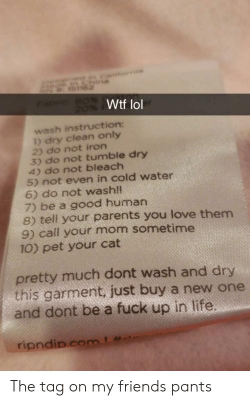 Friends, Life, and Lol: Wtf lol  wash instruction:  ) dry clean only  2) do not iron  3) do not tumble dry  4) do not bleach  5) not even in cold water  6) do not wash!  7) be a good human  8) tell your parents you love them  9) call your mom sometime  10) pet your cat  pretty much dont wash and dry  this garment. just buy a new one  and dont be a fuck up in life The tag on my friends pants