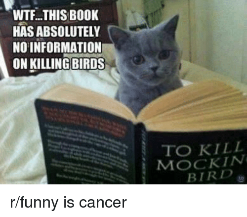WTF THIS BOOK HAS ABSOLUTELY NO INFORMATION ON KILLING BIRDS TO KILL