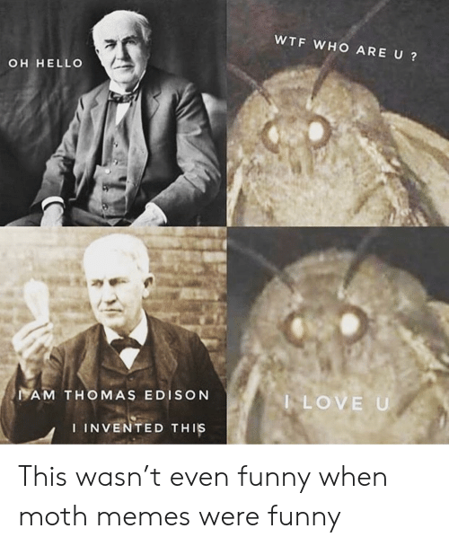 Funny, Hello, and Love: WTF WHO ARE U?  OH HELLO  AM THOMAS EDISON  LOVE U  IINVENTED THIS This wasn't even funny when moth memes were funny