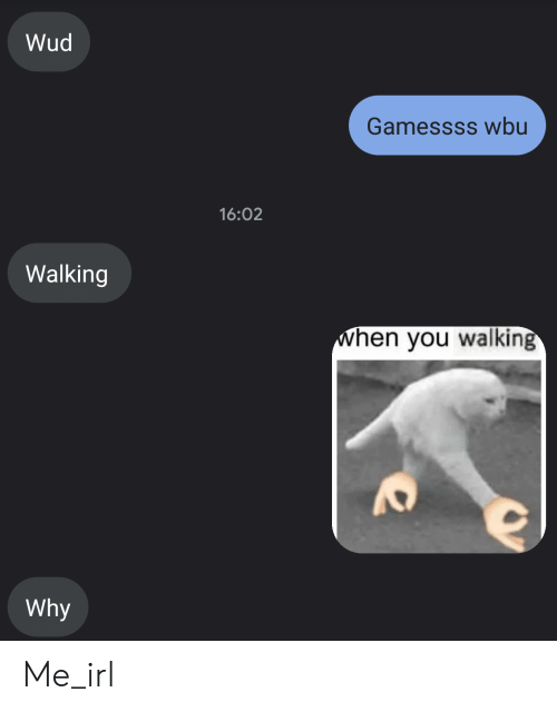 Irl, Me IRL, and Why: Wud  Gamessss wbu  16:02  Walking  hen you walking  Why Me_irl
