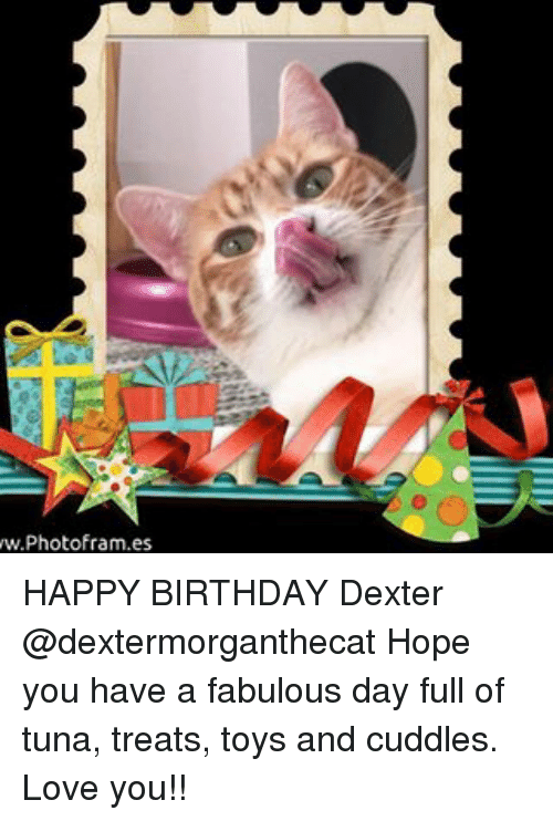 Wwphotoframes Happy Birthday Dexter Hope You Have A Fabulous Day