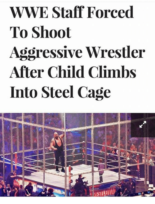 Memes, World Wrestling Entertainment, and Aggressive: WWE Staff Forced  To Shoot  Aggressive Wrestler  After Child Climbs  Into Steel Cage