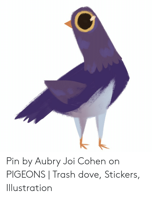 Wwmcanvases S Pin by Aubry Joi Cohen on PIGEONS | Trash Dove