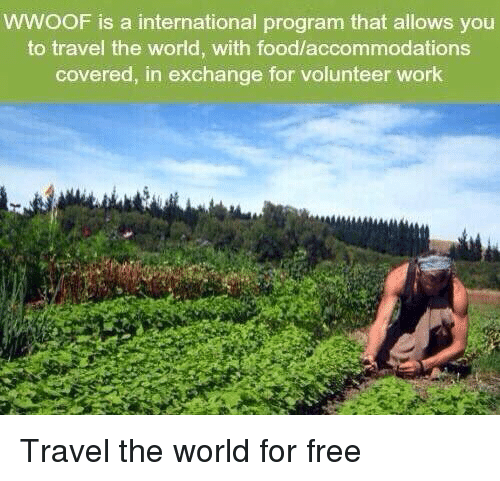 WWOOF Is a International Program That Allows You to Travel