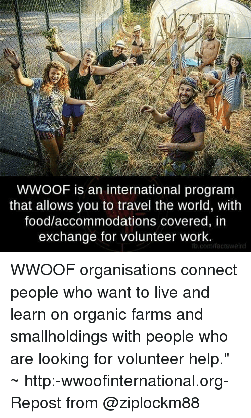 WWOOF Is an International Program That Allows You to Travel