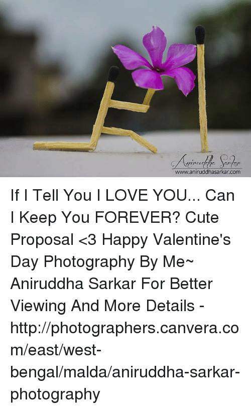Memes, Bengals, and 🤖: www.aniruddhasarkan com If I Tell You I LOVE YOU... Can I Keep You FOREVER?  Cute Proposal <3 Happy Valentine's Day  Photography By Me~ Aniruddha Sarkar  For Better Viewing And More Details - http://photographers.canvera.com/east/west-bengal/malda/aniruddha-sarkar-photography
