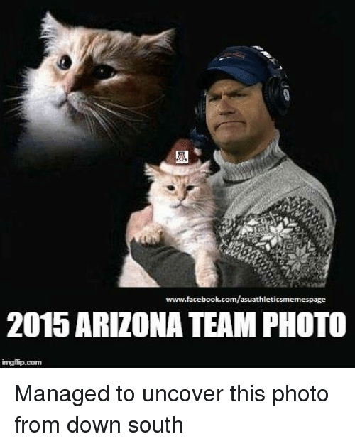 www facebook com asuathleti 2015 arizona team photo ingfip com managed to uncover 782692 ✅ 25 best memes about arizona state university arizona state