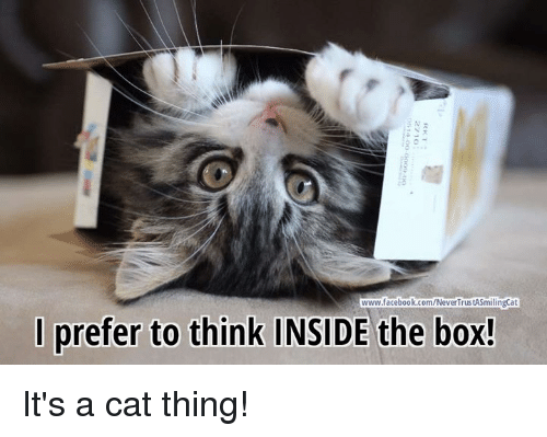 Memes, 🤖, and The Box: www.facebook.com/NeverTrustASmilingCat  prefer to think INSIDE the box! It's a cat thing!