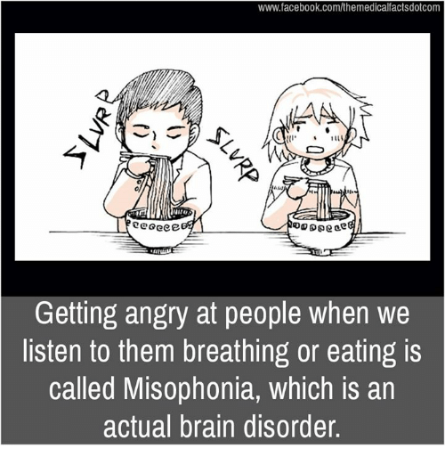 Facebook, Memes, and Brain: www.facebook.com/themedicalfactsdotcom  eGeee  Getting angry at people when we  listen to them breathing or eating is  called Misophonia, which is an  actual brain disorder