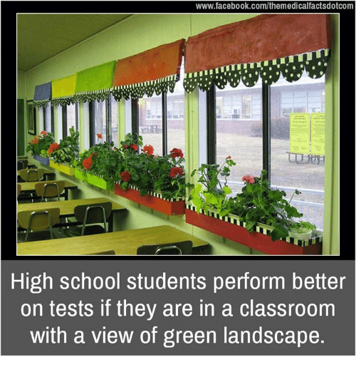 Memes, Classroom, and Landscaping: www.facebook.com/themedicalfactsdotcom  High school students perform better  on tests if they are in a classroom  with a view of green landscape.