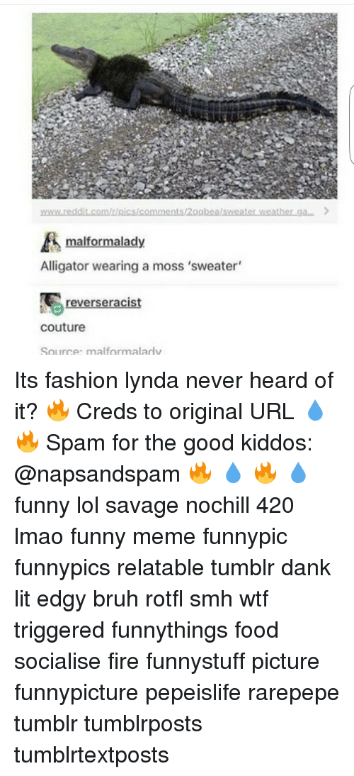 Lynda Any Good Reddit