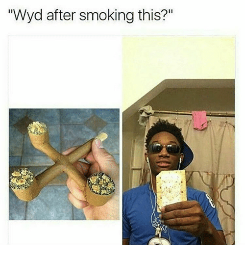 """Memes, Smoking, and Wyd: """"Wyd after smoking this?"""""""