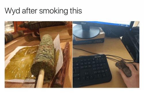 Memes, Wyd, and 🤖: Wyd after smoking this