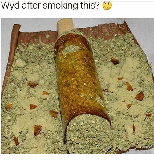 Memes, Smoking, and Wyd: Wyd after smoking this?