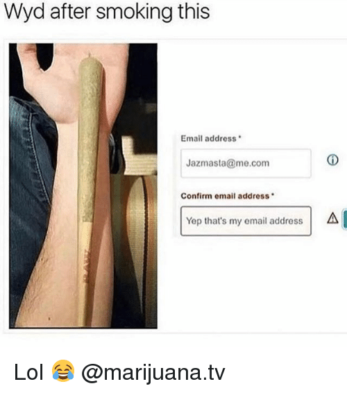 Lol, Memes, and Smoking: Wyd after smoking this  Email address  Jazmasta@me.com  Confirm email address  Yep that's my email address  A Lol 😂 @marijuana.tv