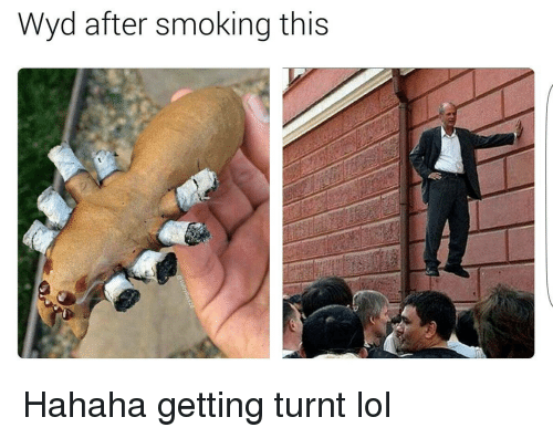 Funny,  Get Turnt, and Getting Turnt: Wyd after smoking this Hahaha getting turnt lol