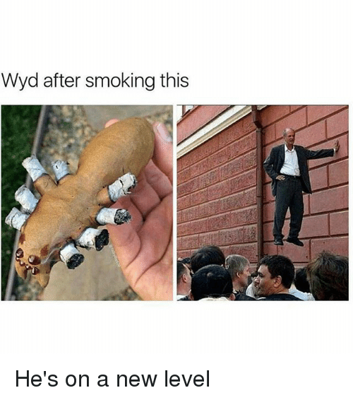 Memes, Smoking, and Wyd: Wyd after smoking this He's on a new level