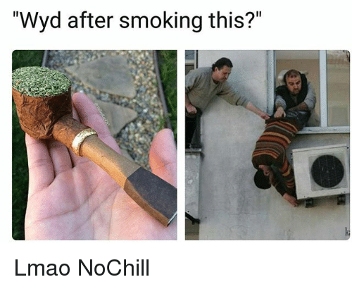 "Funny, Lmao, and Smoking: ""Wyd after smoking this?"" Lmao NoChill"