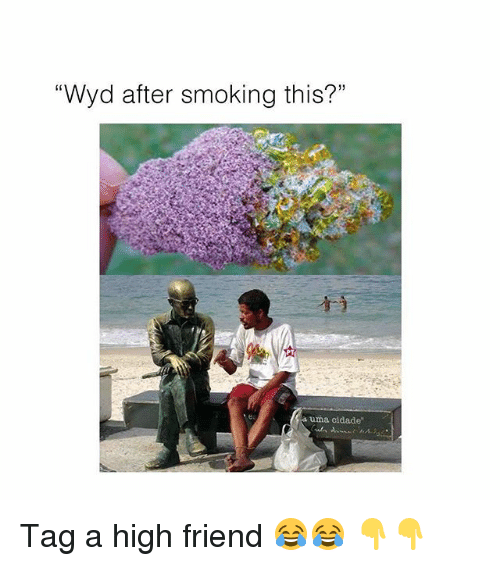 "Memes, Smoking, and Wyd: Wyd after smoking this?""  PT  a uma cidade Tag a high friend 😂😂 👇👇"