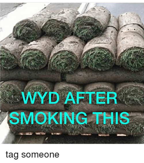 Memes, Smoking, and Wyd: WYD AFTER  SMOKING THIS tag someone