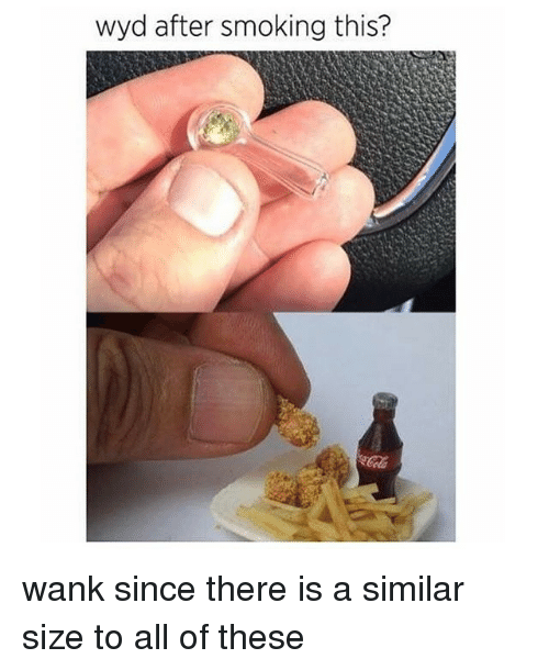 Memes, Smoking, and Wyd: wyd after smoking this? wank since there is a similar size to all of these